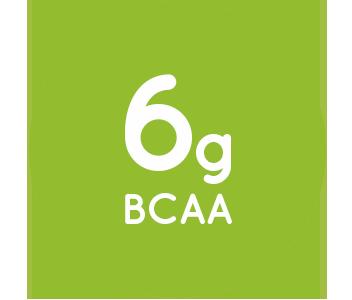 6g-BCAA-par-portion